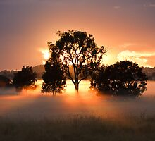 Oxley Creek Commons Sunrise by David de Groot