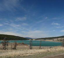 Big skies, Gang Ranch country by Darbs