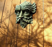 Green Man Fenced In by ys-eye