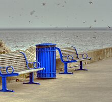 The Benches by HelenN