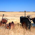 Racing Tractors by Pardus
