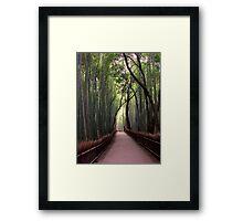 Bamboo Breathtaking Framed Print