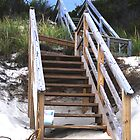 Stairs on the Dunes by lorimae