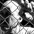 David C - Trapped - Harsh B&W by tmac