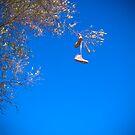 Has anyone seen my shoes? by Elana Bailey