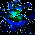 Blue Rose by Tarnee