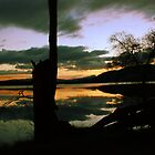 Lake montieth (Scotland) reflections by Kimberley  x ♥ Davitt
