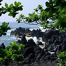 Lava beach in Paradise by Marjorie Wallace