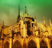Paris - Notre-Dame cathedral by jean-louis bouzou