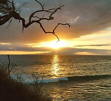 Maui Sunset From Little Beach by Stephen Vecchiotti