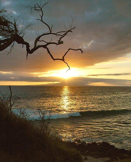 Maui Sunset From Little Beach by Stephen Vecchiotti