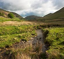 Cumbrian Stream by Paul Davey