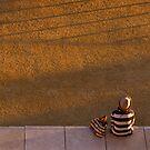 Stripes... by Julian Escardo