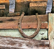 Horseshoe For Good Luck by Misty Lackey