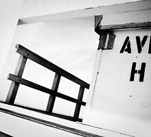 Guarding Avenue H by Sophie Gonin
