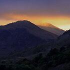 Aran of Wales  by Carl Gaynor