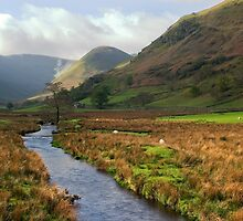 Martindale Stream, Cumbria by Paul Davey