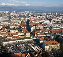 Ljubljana The capital of Slovenia by Knedl