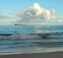 Little Makena Beach, Maui by Stephen Vecchiotti