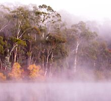 Rising fog at Lake Daylesford by Hans Kawitzki