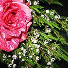 Pink Shot Corner Pocket by Sophia Flot-Warner