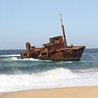 Sygna Shipwreck at Stockton Beach. by caz60B