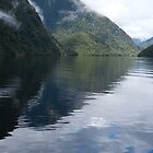 Milford Sound, New Zealand by Angela1