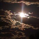 Colorado Night by Anita Schuler