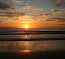 Rincon Beach Sunset by Susannah Stapp