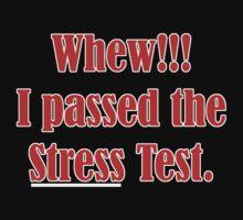 STRESS TEST by Paul Quixote Alleyne