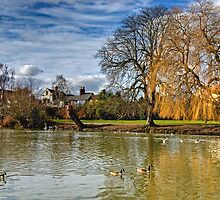 River Avon by gollum1985