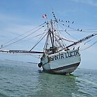 The Santa Lucia Aground  - Key West Florida by Memaa