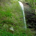 Douglas falls by Forrest Tainio
