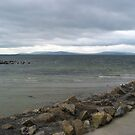 Galway Bay no.3 by Orla Cahill