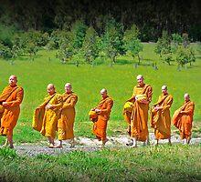 Disciples by Anuja Manchanayake