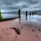 Teignmouth beach by benivory