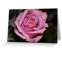 *Pink Rose* Greeting Card