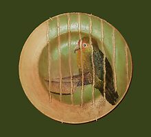 Birdie Plate by Orla Cahill