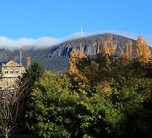 Mount Wellington by Chris Cobern