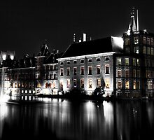 The Binnenhof by Roddy Atkinson
