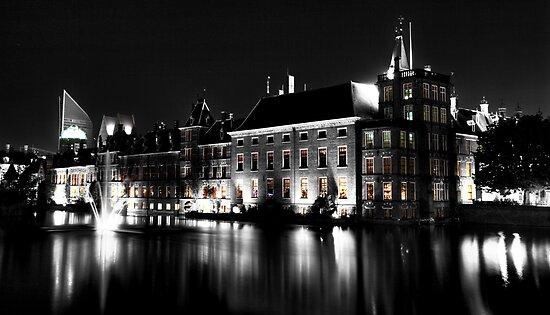 The Binnenhof by Roddy Atkinson
