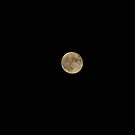 Mother's Day Full Moon by VanillaDolphin