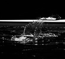 Splash by Matt Sillence