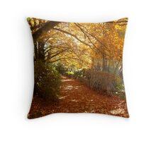 Autumn Pathway 2 Throw Pillow