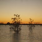 Menindee (Main Weir) by Topher Webb