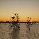Menindee (Main Weir) by Topher Webb