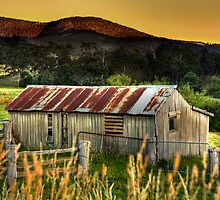 The old cattle yard - Judbury by Paul Redding