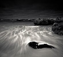 Swept ashore by Alistair Wilson