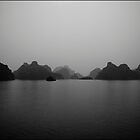 Halong Bay by JonasDeMan