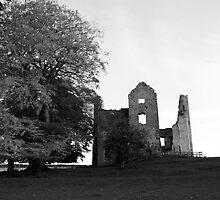 old ruin's at slane. co. meath. no2. by Finbarr Reilly